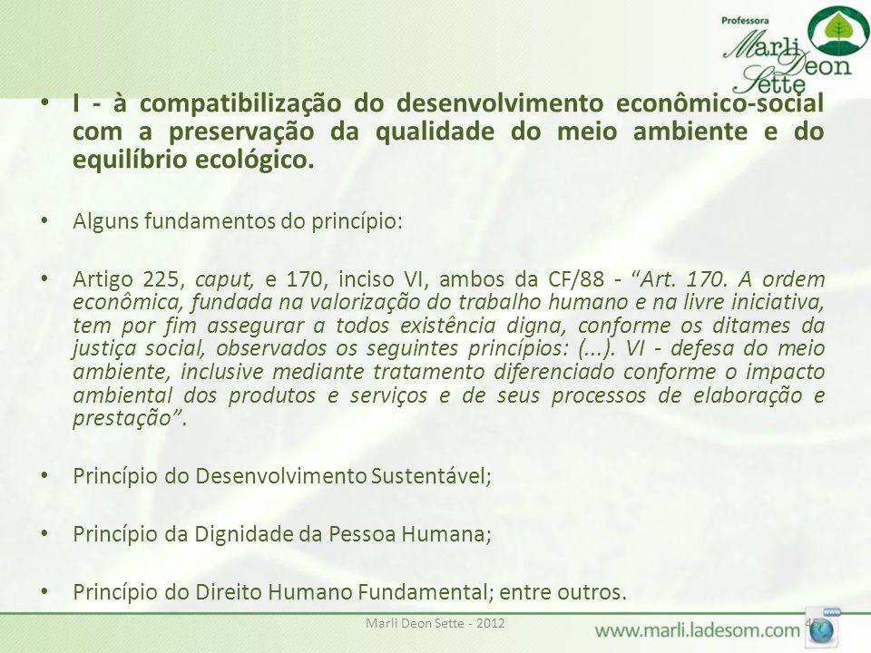 I - à compatibilização do desenvolvimento econômico-social com a preservação da qualidade do meio ambiente e do equilíbrio ecológico.