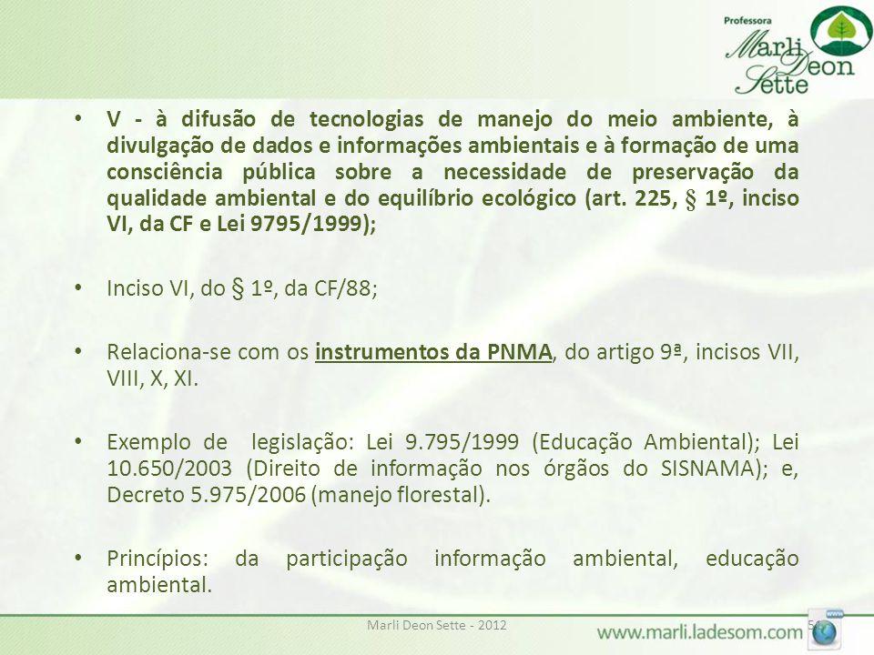Princípios: da participação informação ambiental, educação ambiental.
