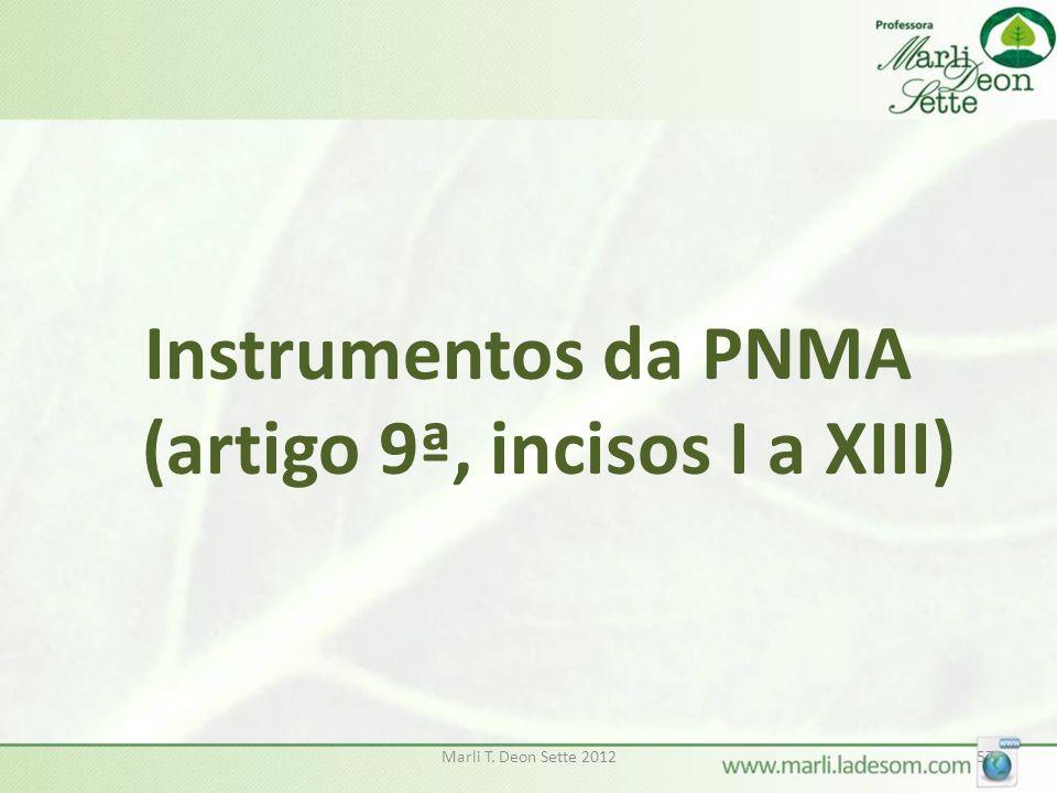 Instrumentos da PNMA (artigo 9ª, incisos I a XIII)