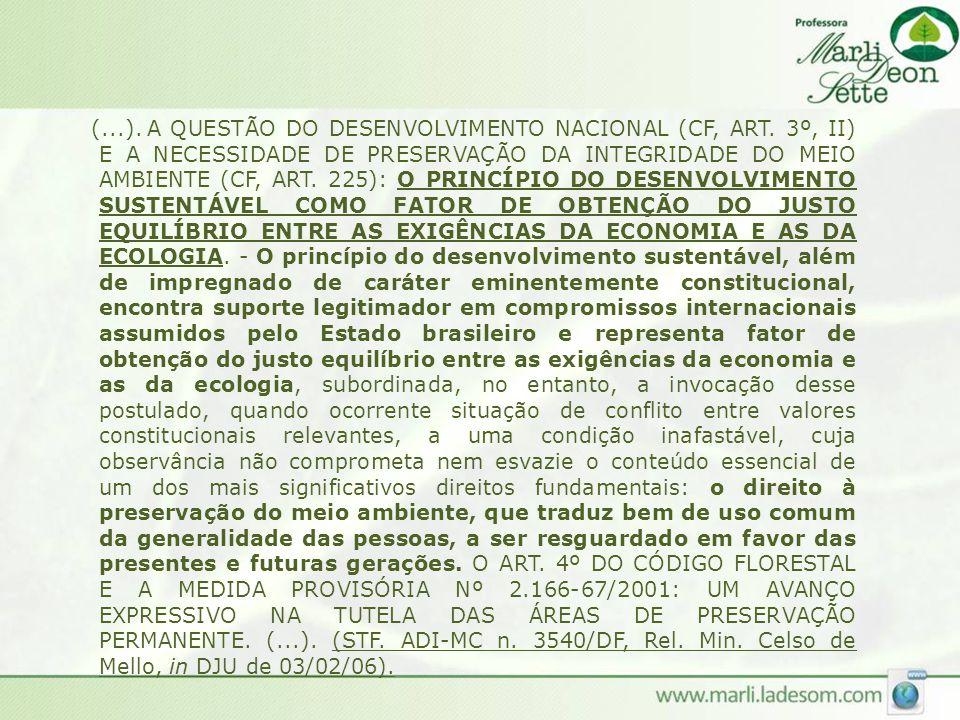 (. ). A QUESTÃO DO DESENVOLVIMENTO NACIONAL (CF, ART