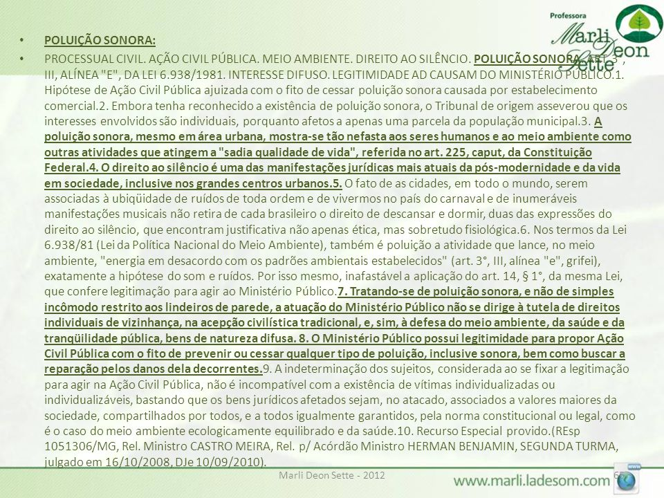 POLUIÇÃO SONORA: