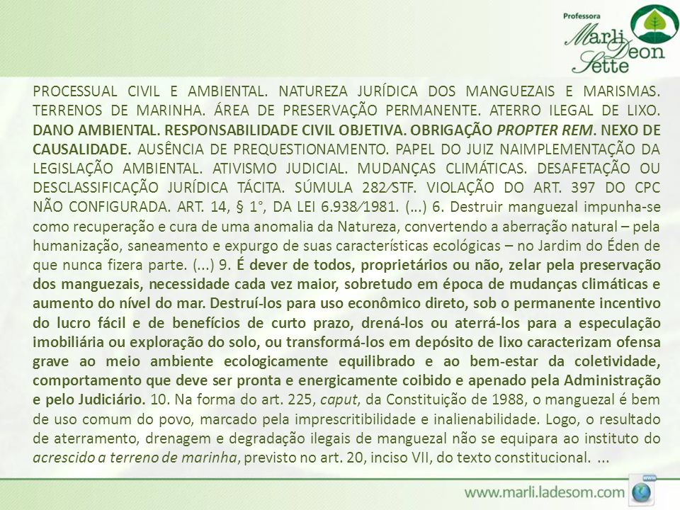 PROCESSUAL CIVIL E AMBIENTAL
