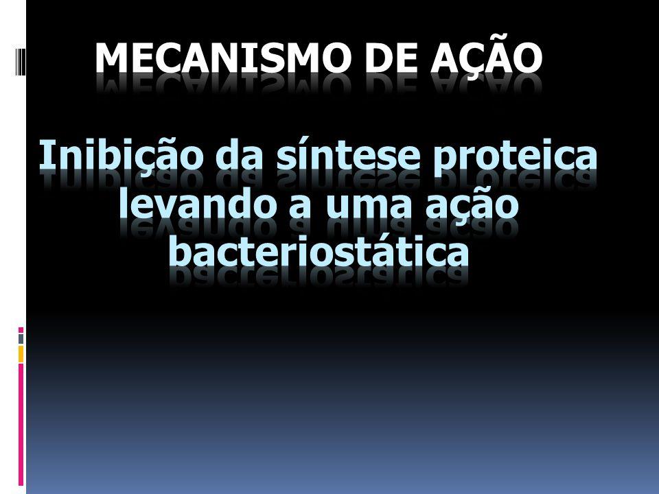 MECANISMO DE AÇÃO Inibição da síntese proteica levando a uma ação bacteriostática