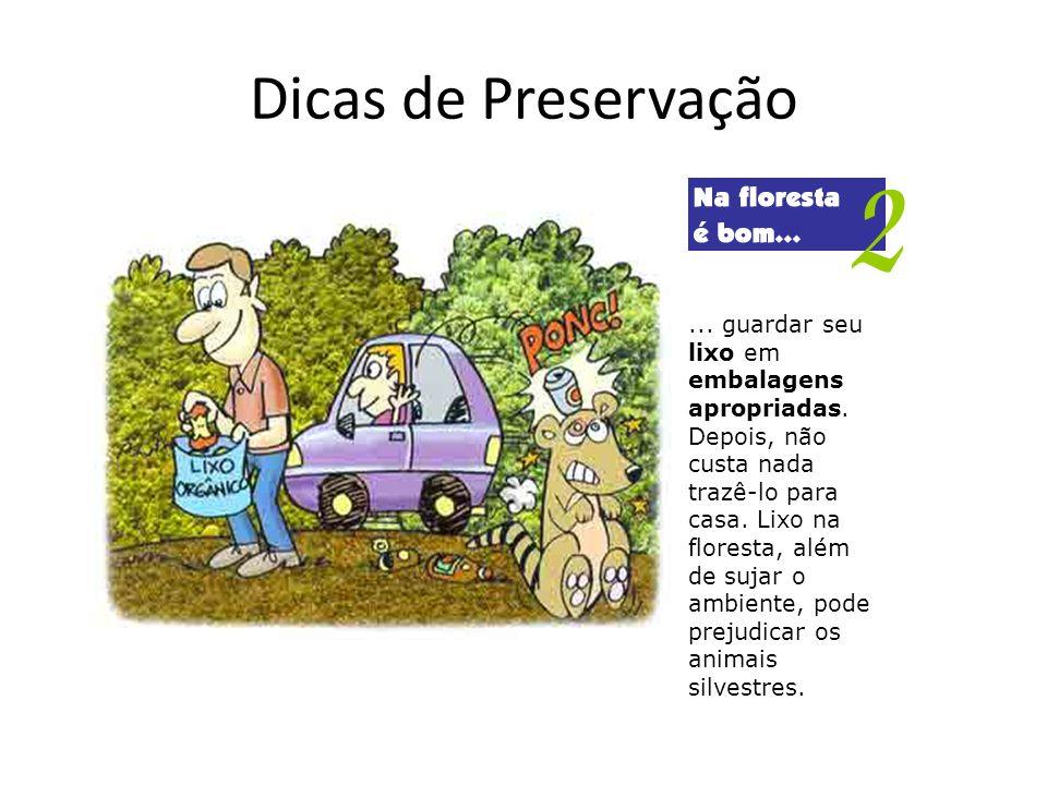 Dicas de Preservação