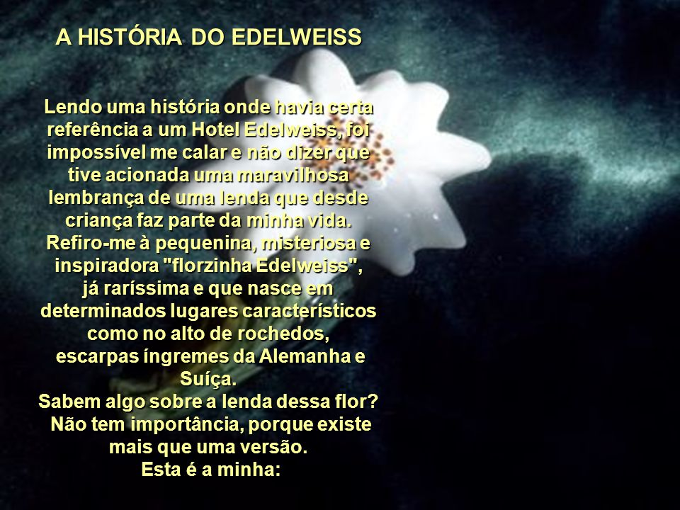 A HISTÓRIA DO EDELWEISS
