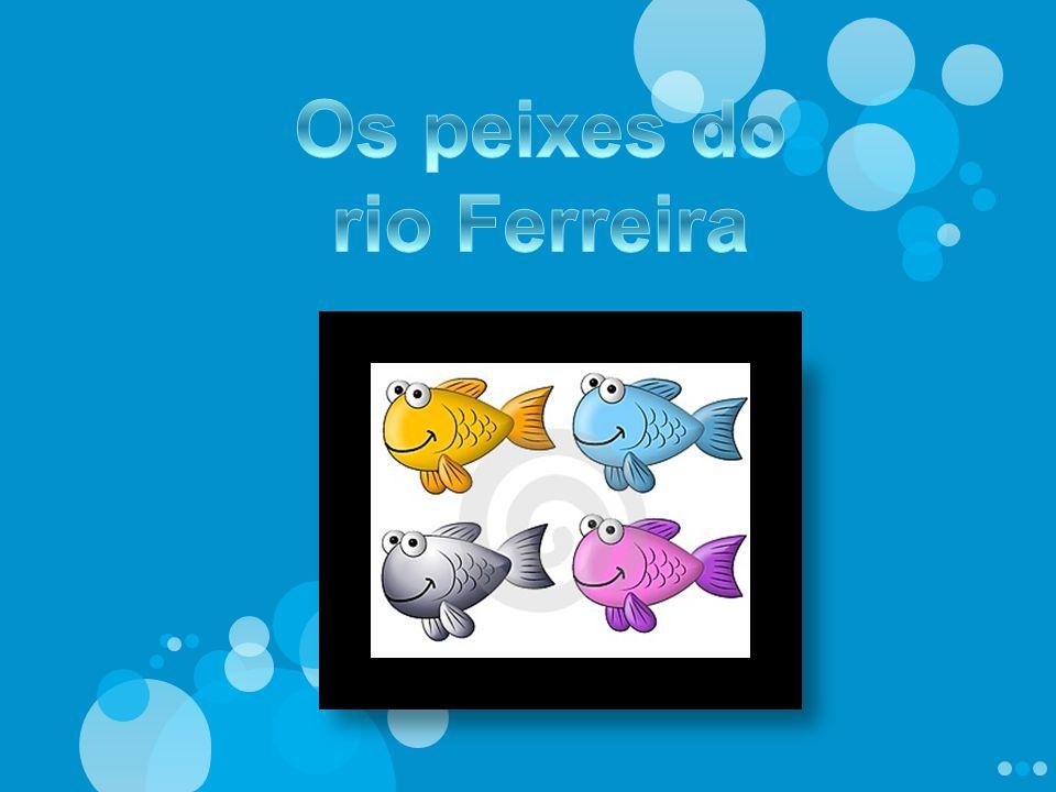 Os peixes do rio Ferreira
