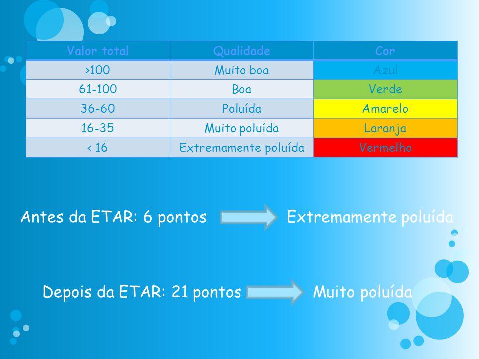 Antes da ETAR: 6 pontos Extremamente poluída