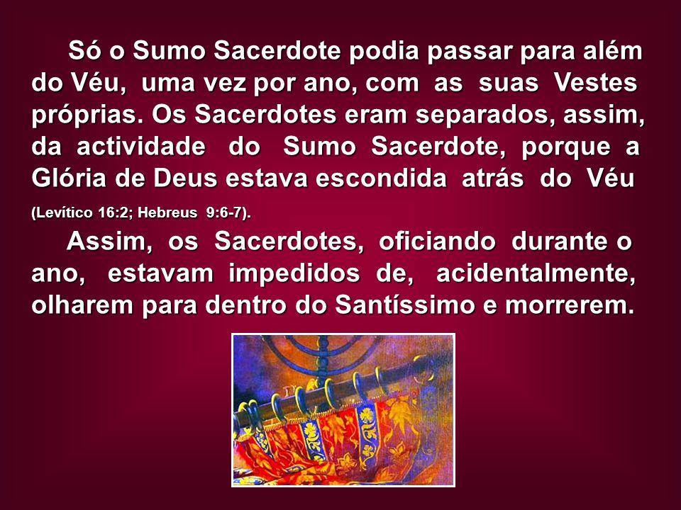 Só o Sumo Sacerdote podia passar para além do Véu, uma vez por ano, com as suas Vestes próprias. Os Sacerdotes eram separados, assim, da actividade do Sumo Sacerdote, porque a Glória de Deus estava escondida atrás do Véu (Levítico 16:2; Hebreus 9:6-7).