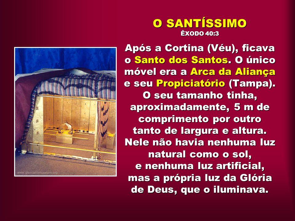O SANTÍSSIMO ÊXODO 40:3 Após a Cortina (Véu), ficava o Santo dos Santos.