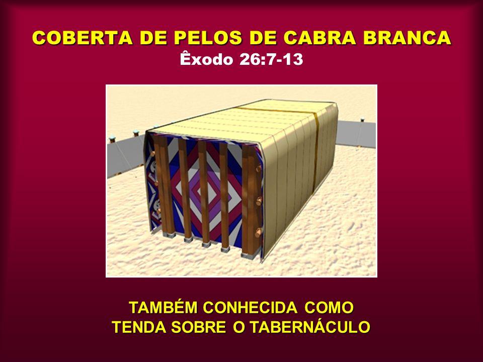 COBERTA DE PELOS DE CABRA BRANCA Êxodo 26:7-13