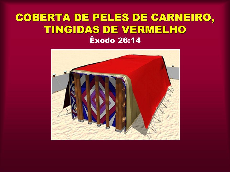 COBERTA DE PELES DE CARNEIRO, TINGIDAS DE VERMELHO Êxodo 26:14