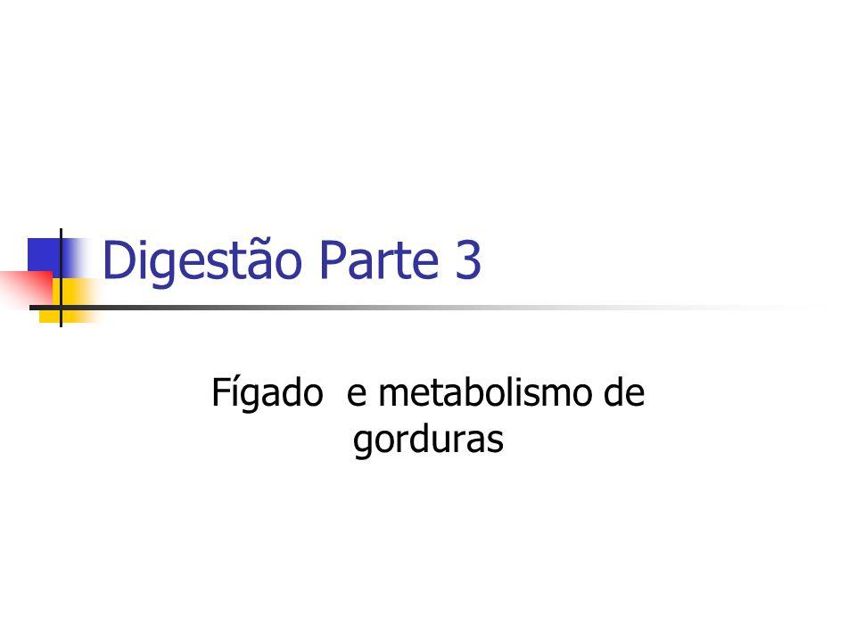 Fígado e metabolismo de gorduras