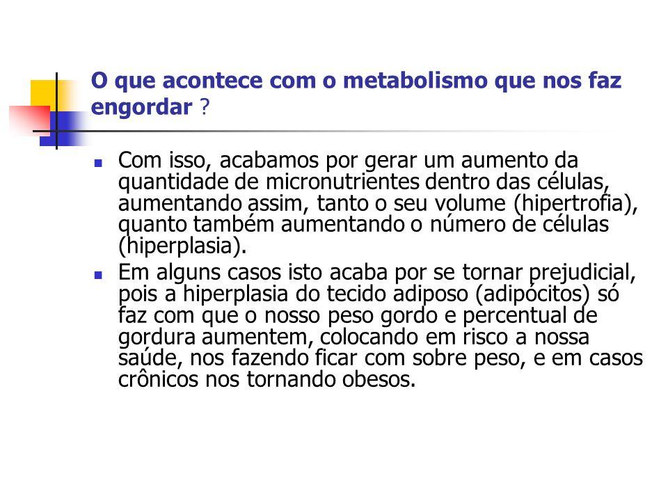 O que acontece com o metabolismo que nos faz engordar