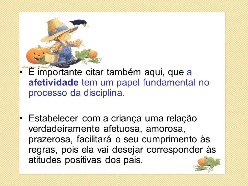 É importante citar também aqui, que a afetividade tem um papel fundamental no processo da disciplina.