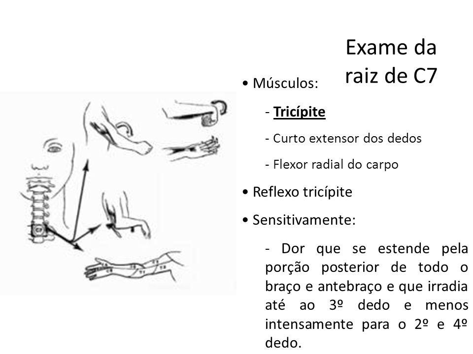 Exame da raiz de C7 Músculos: Tricípite Reflexo tricípite
