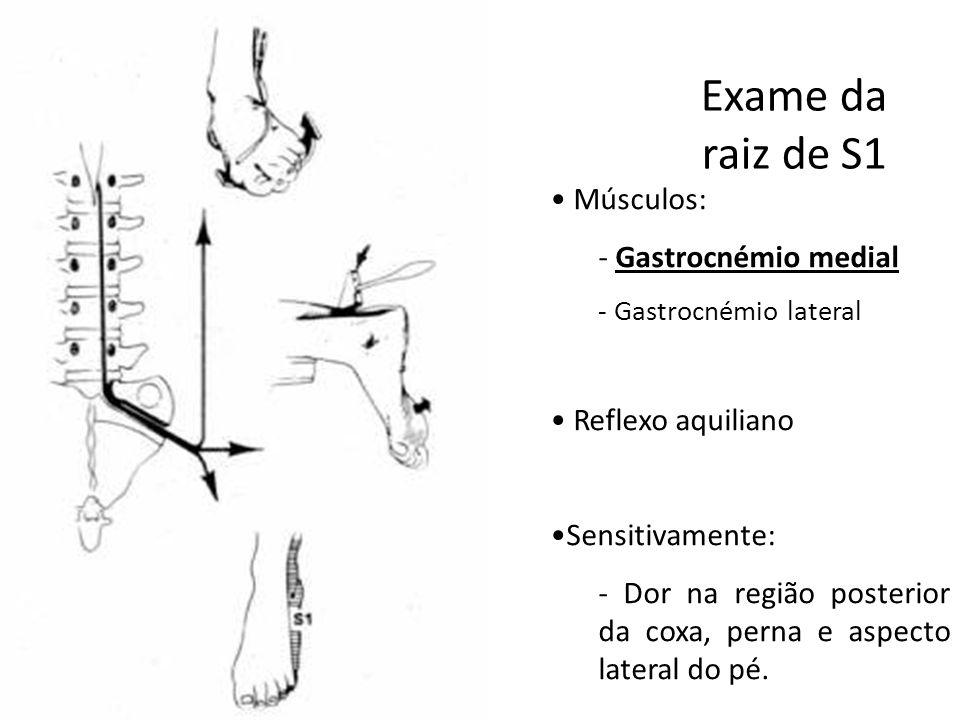 Exame da raiz de S1 Músculos: Gastrocnémio medial Reflexo aquiliano