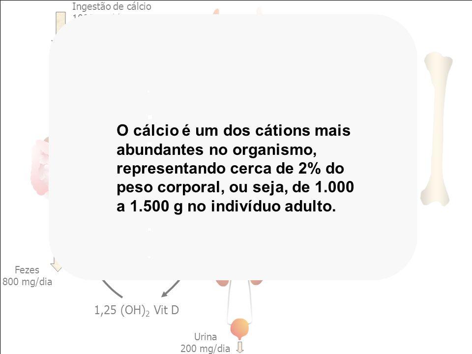 CÁLCIO EXTRACELULAR PTH