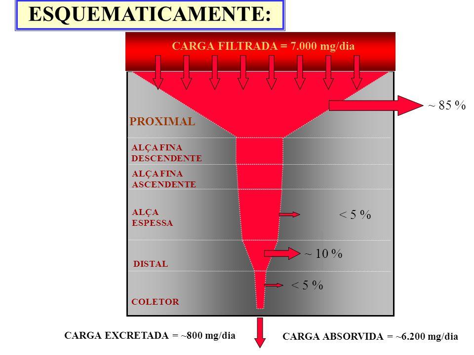 ESQUEMATICAMENTE: ~ 85 % < 5 % ~ 10 % < 5 %