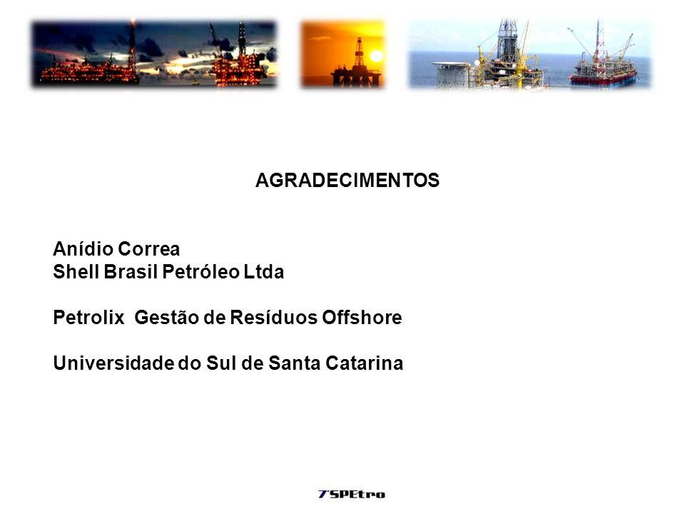 AGRADECIMENTOS Anídio Correa. Shell Brasil Petróleo Ltda.