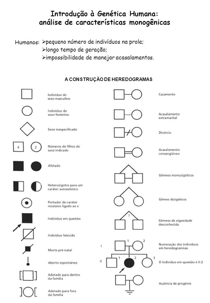 Introdução à Genética Humana: análise de características monogênicas