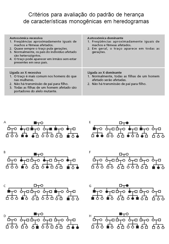 Critérios para avaliação do padrão de herança