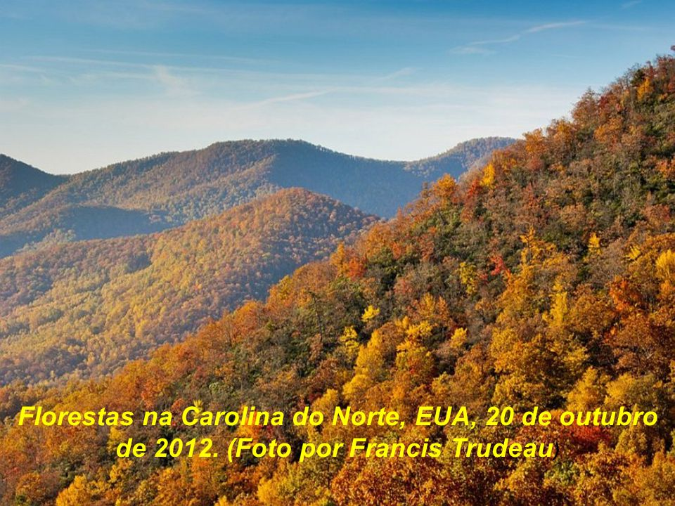 Florestas na Carolina do Norte, EUA, 20 de outubro de 2012