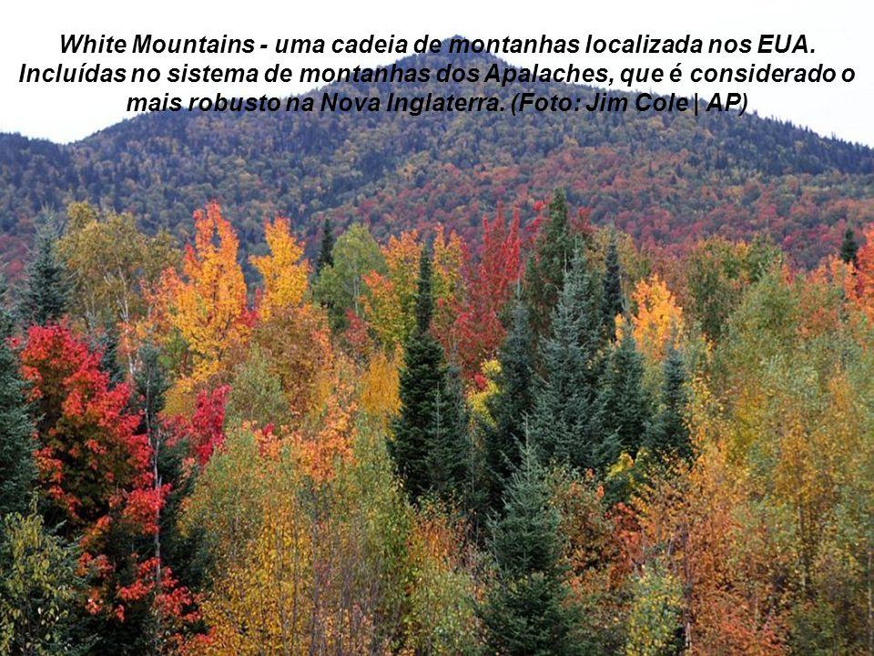 White Mountains - uma cadeia de montanhas localizada nos EUA