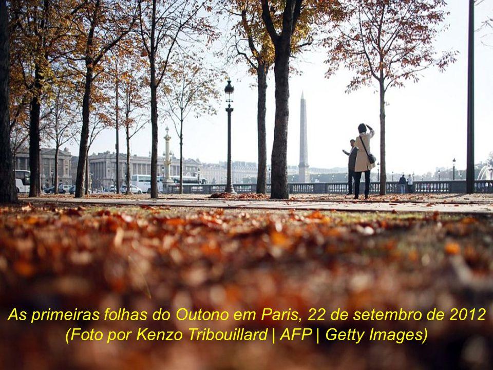 As primeiras folhas do Outono em Paris, 22 de setembro de 2012 (Foto por Kenzo Tribouillard | AFP | Getty Images)