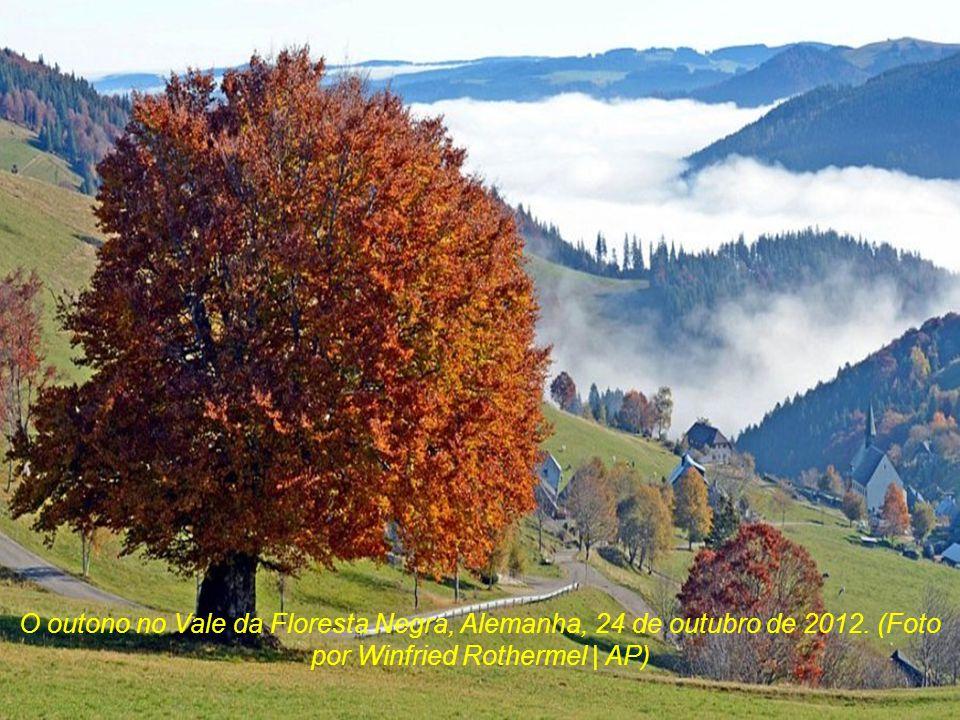 O outono no Vale da Floresta Negra, Alemanha, 24 de outubro de 2012