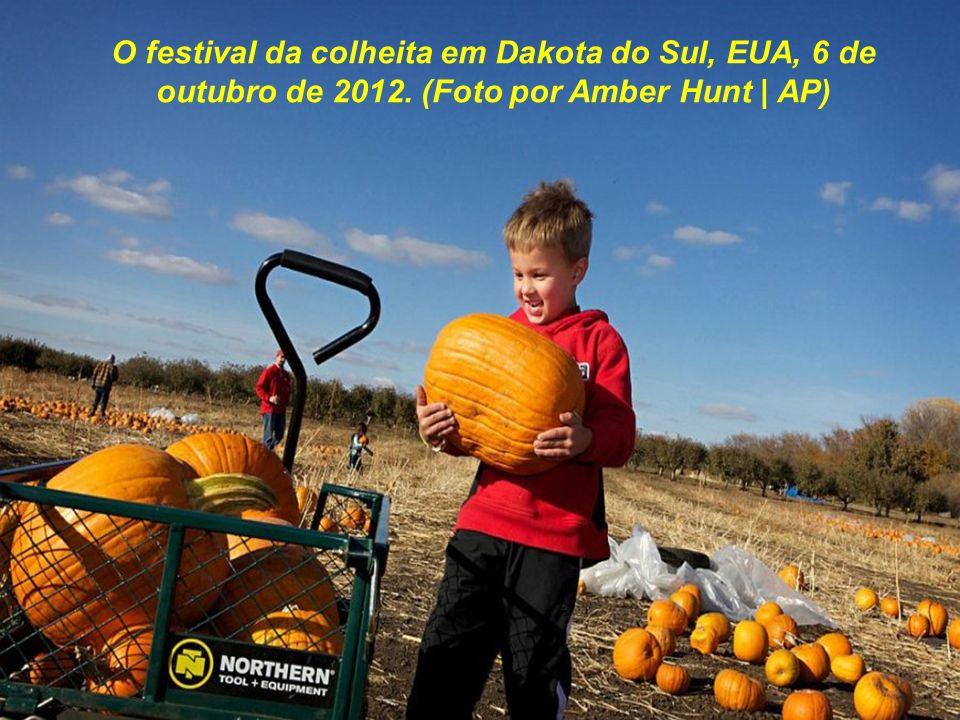 O festival da colheita em Dakota do Sul, EUA, 6 de outubro de 2012