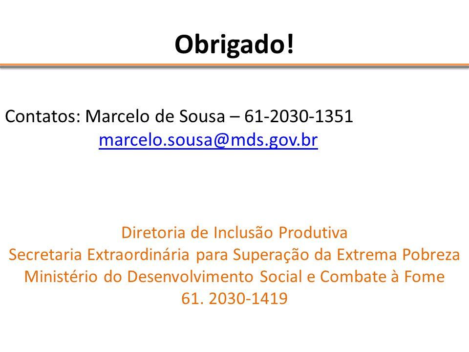 Obrigado! Contatos: Marcelo de Sousa – 61-2030-1351