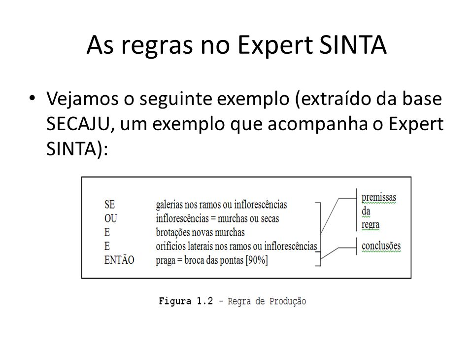 As regras no Expert SINTA