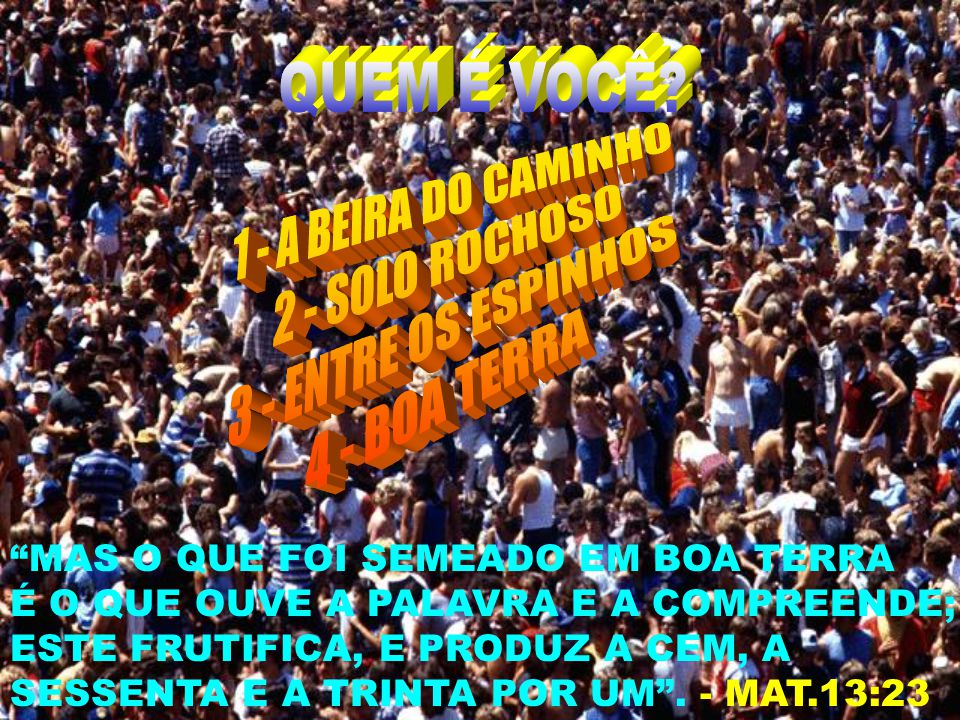 1 - A BEIRA DO CAMINHO 2 - SOLO ROCHOSO 3 - ENTRE OS ESPINHOS