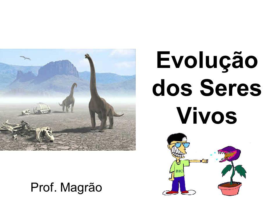 Evolução dos Seres Vivos