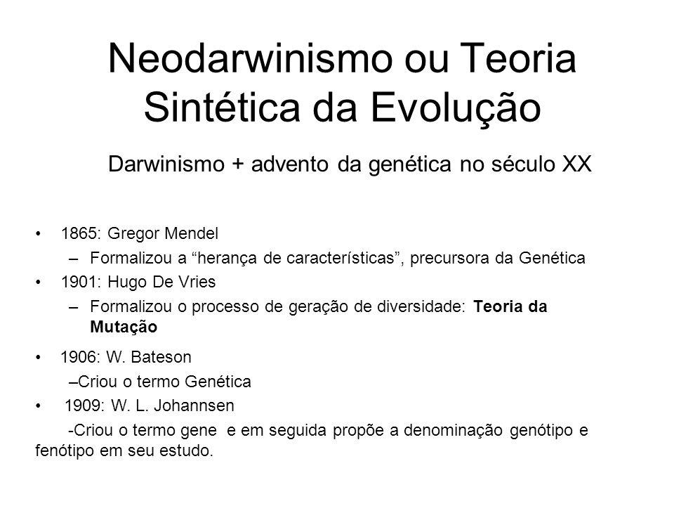Neodarwinismo ou Teoria Sintética da Evolução