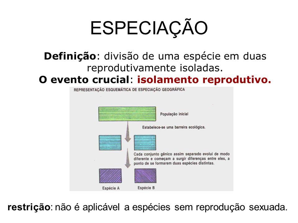 ESPECIAÇÃO Definição: divisão de uma espécie em duas reprodutivamente isoladas. O evento crucial: isolamento reprodutivo.