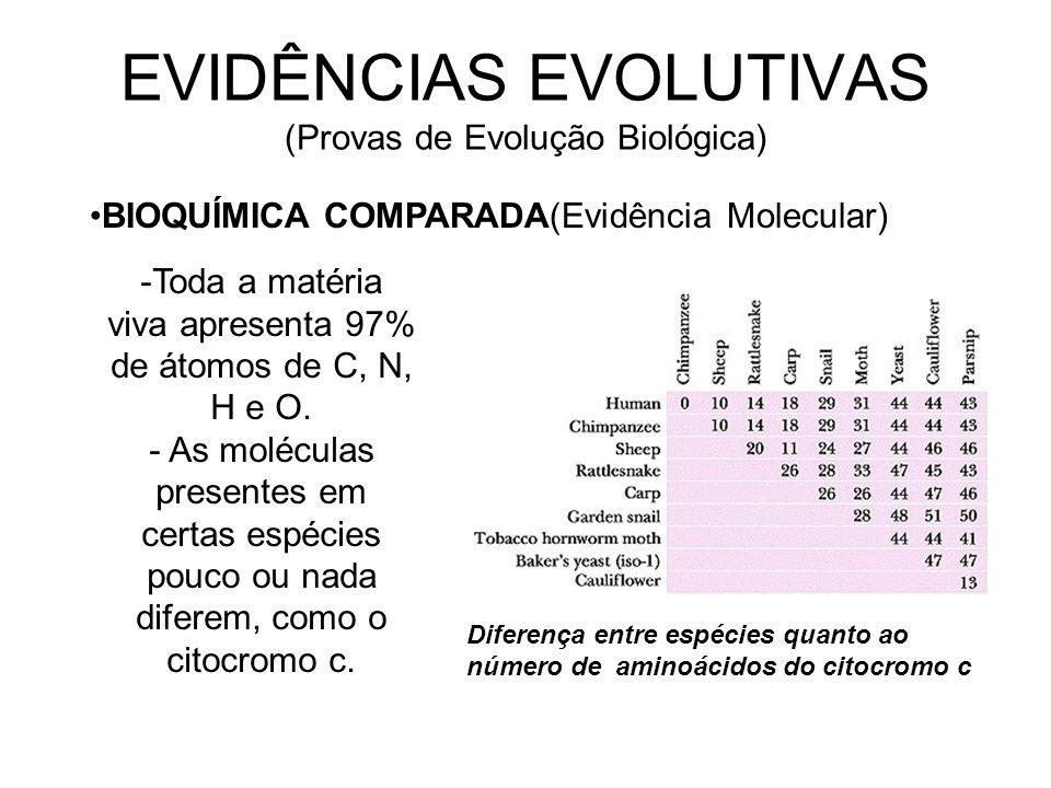 EVIDÊNCIAS EVOLUTIVAS (Provas de Evolução Biológica)