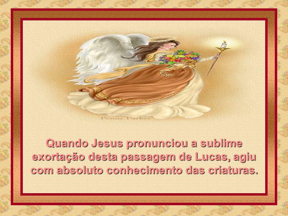 Quando Jesus pronunciou a sublime exortação desta passagem de Lucas, agiu com absoluto conhecimento das criaturas.