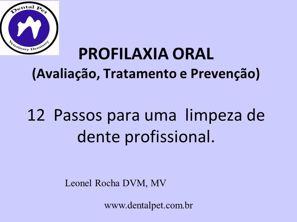 PROFILAXIA ORAL (Avaliação, Tratamento e Prevenção) 12 Passos para uma limpeza de dente profissional.