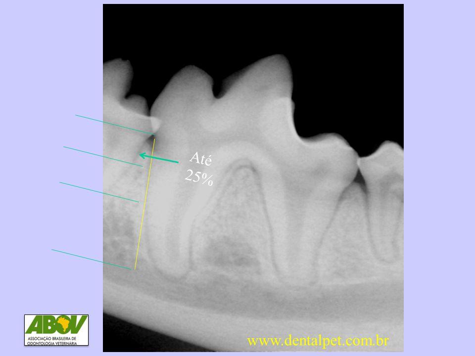 DP2 Perda óssea até 25% Até 25% www.dentalpet.com.br