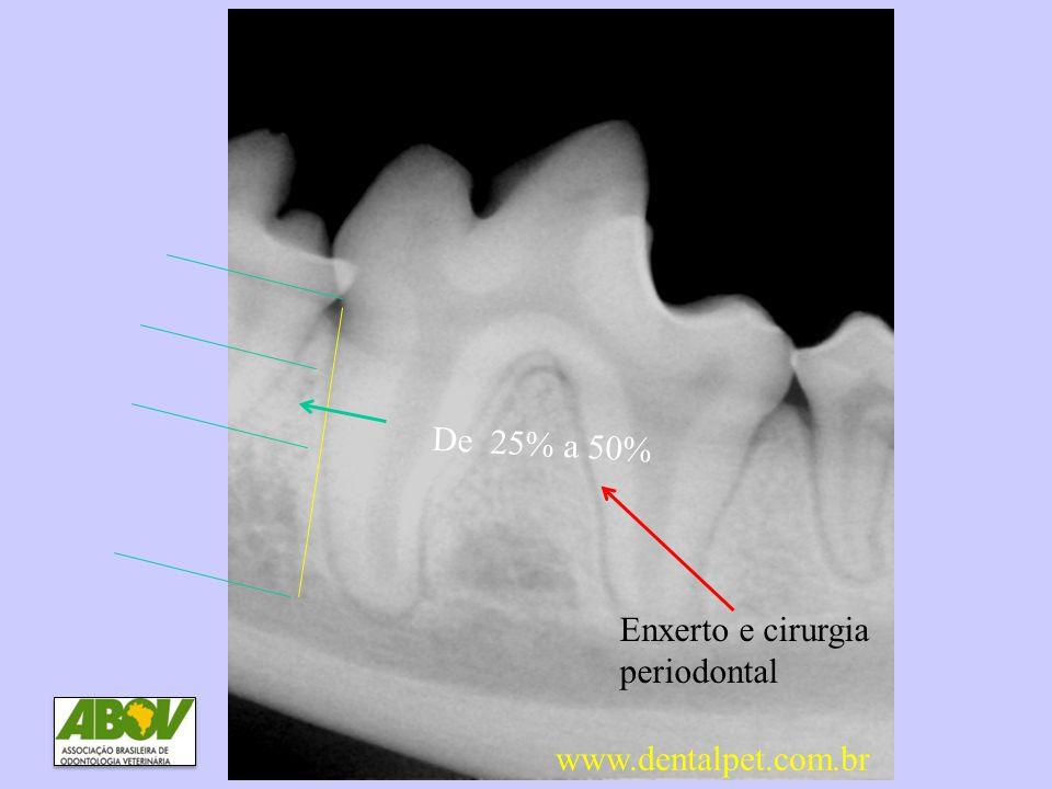 DP3 Perda óssea entre 25 e 50% De 25% a 50% Enxerto e cirurgia periodontal www.dentalpet.com.br