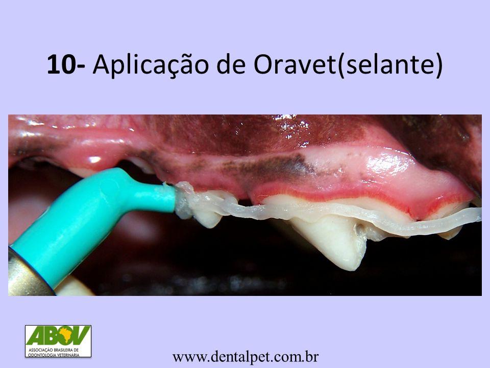 10- Aplicação de Oravet(selante)