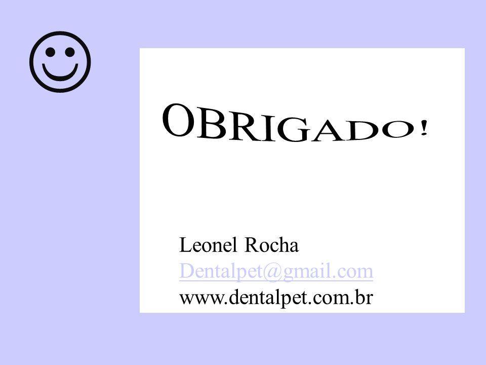  OBRIGADO! Leonel Rocha Dentalpet@gmail.com www.dentalpet.com.br