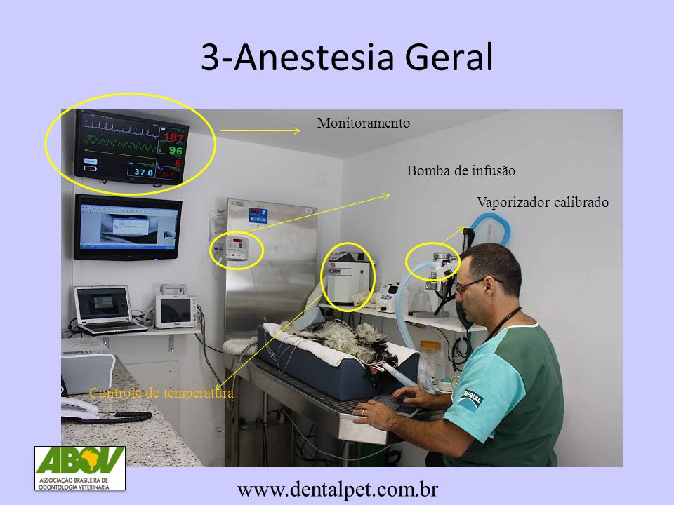 3-Anestesia Geral www.dentalpet.com.br Monitoramento Bomba de infusão