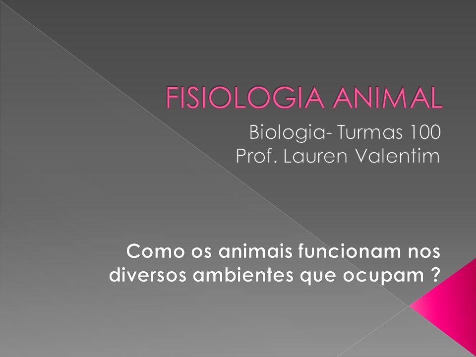 FISIOLOGIA ANIMAL Biologia- Turmas 100 Prof. Lauren Valentim