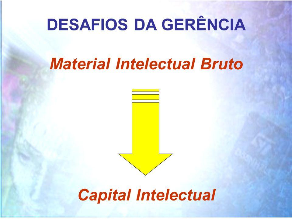 Material Intelectual Bruto