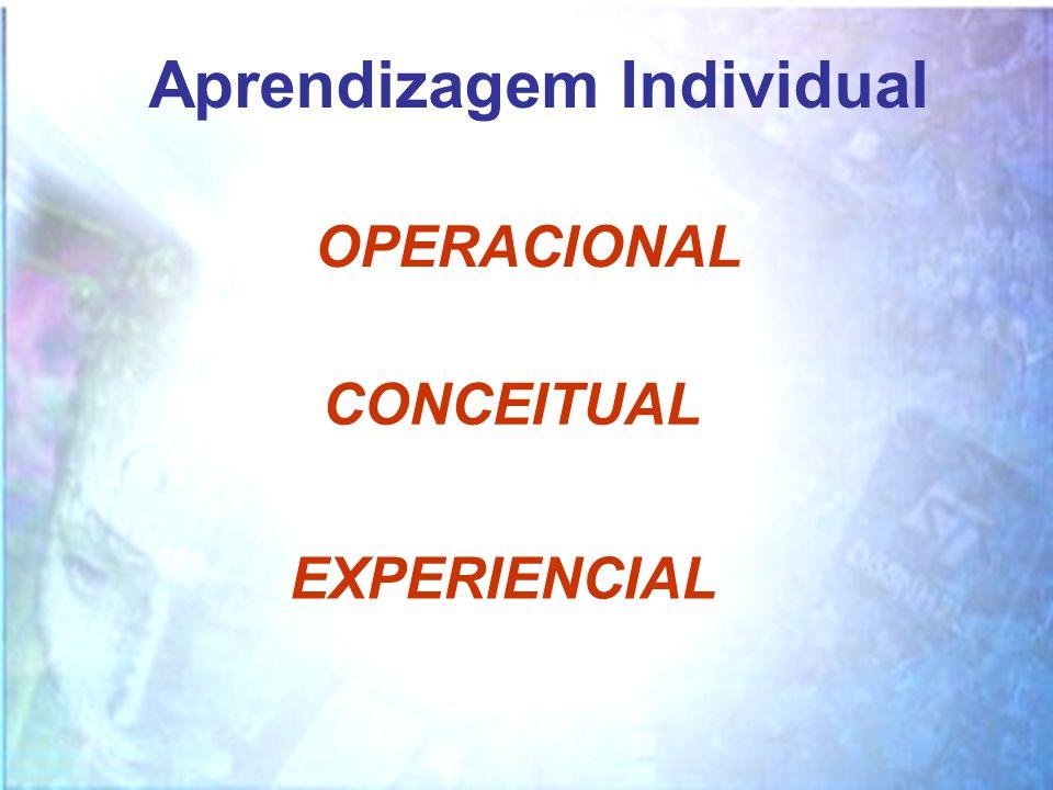 Aprendizagem Individual