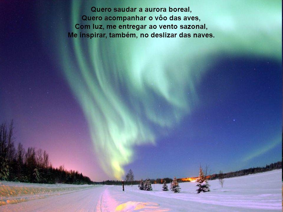 Quero saudar a aurora boreal, Quero acompanhar o vôo das aves,