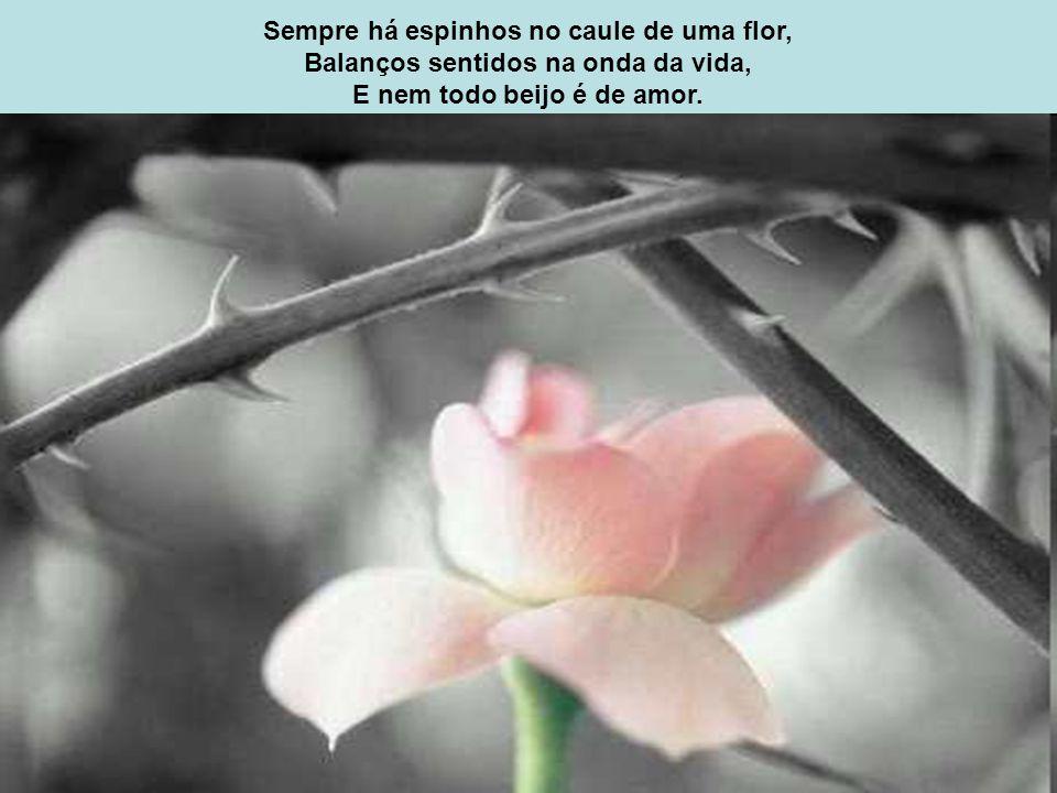 Sempre há espinhos no caule de uma flor,