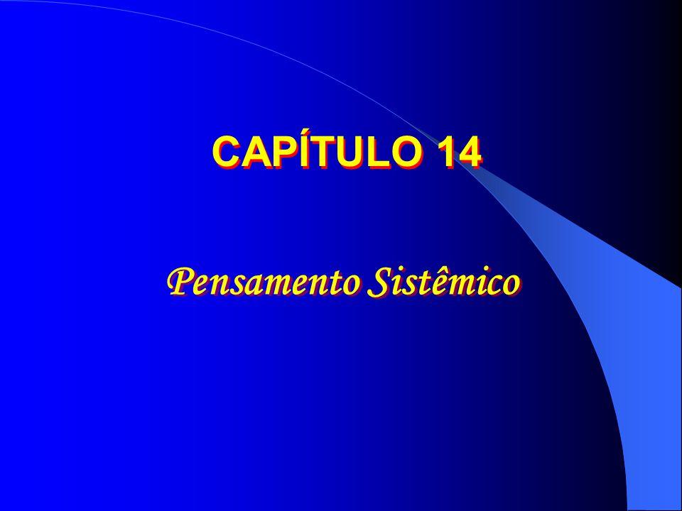CAPÍTULO 14 Pensamento Sistêmico